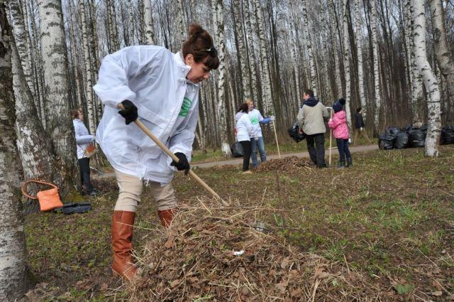 ВЯрославле насубботник вПавловский парк пришли 5 тыс. человек