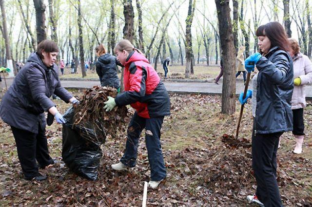 Координировали работу добровольцев горячие линии.
