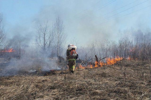 27 и 28 апреля спасатели несколько раз выезжали на тушение горящей травы.