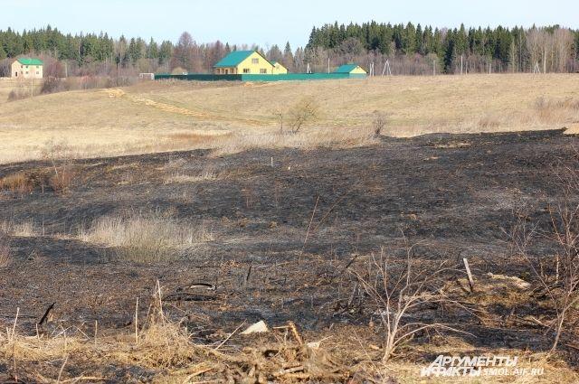 Более 95 % пожаров удалось локализовать уже в первые сутки.