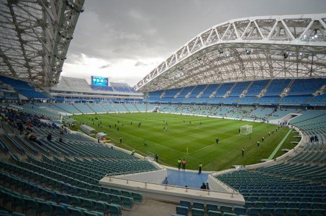 Поле стадиона «Фишт» в Сочи.