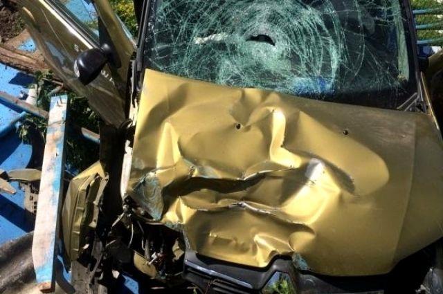 ВАпшеронском районе Кубани под колёсами иномарки умер пешеход