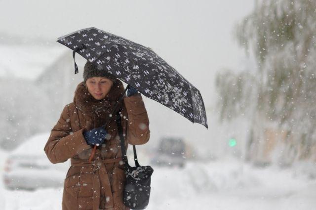 Вследующие выходные вПетербурге снова пойдет снег