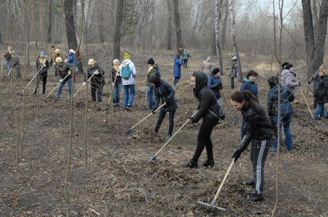 Безработных Тюмени приглашают на уборку обелисков и озеленение парков