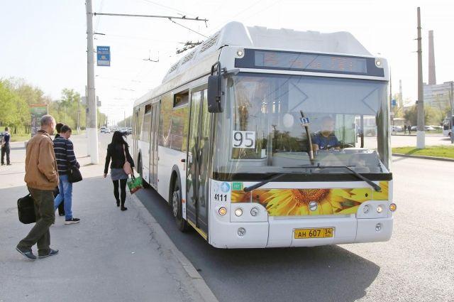 Начинаем привыкать к автобусам.