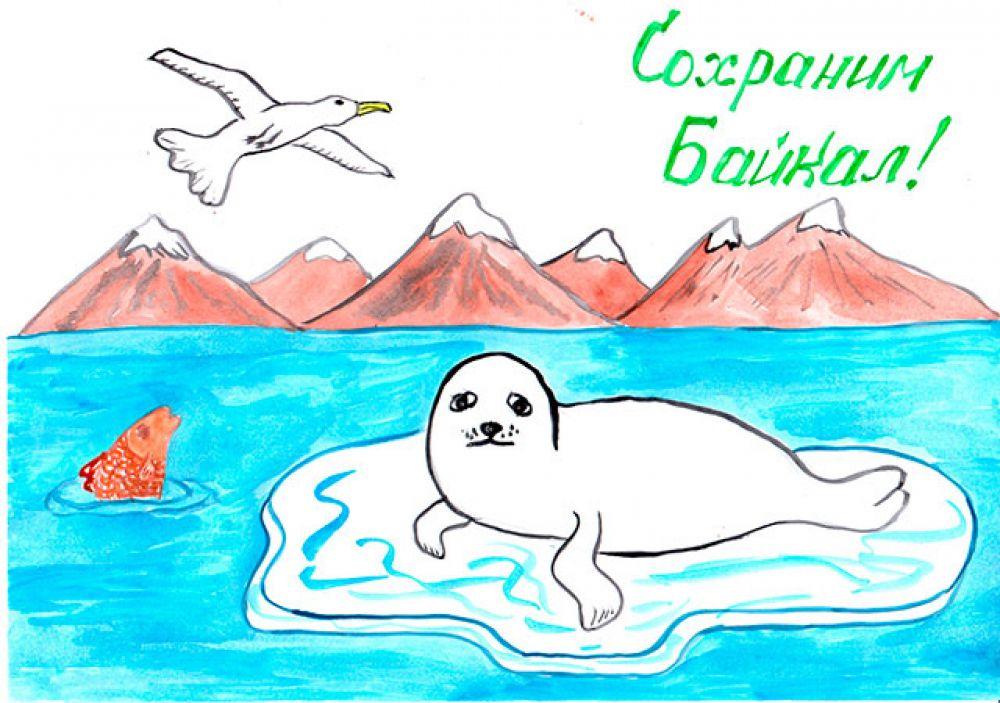 Участник №141 Мусаткин Тимофей