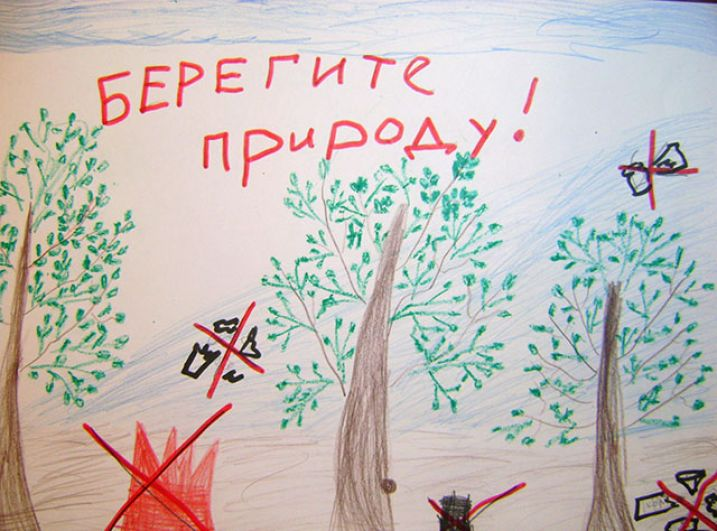 Участник №191 Просветова Софья