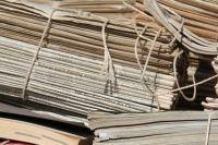Тюменцы могут помочь сохранить деревья, отдав макулатуру на переработку