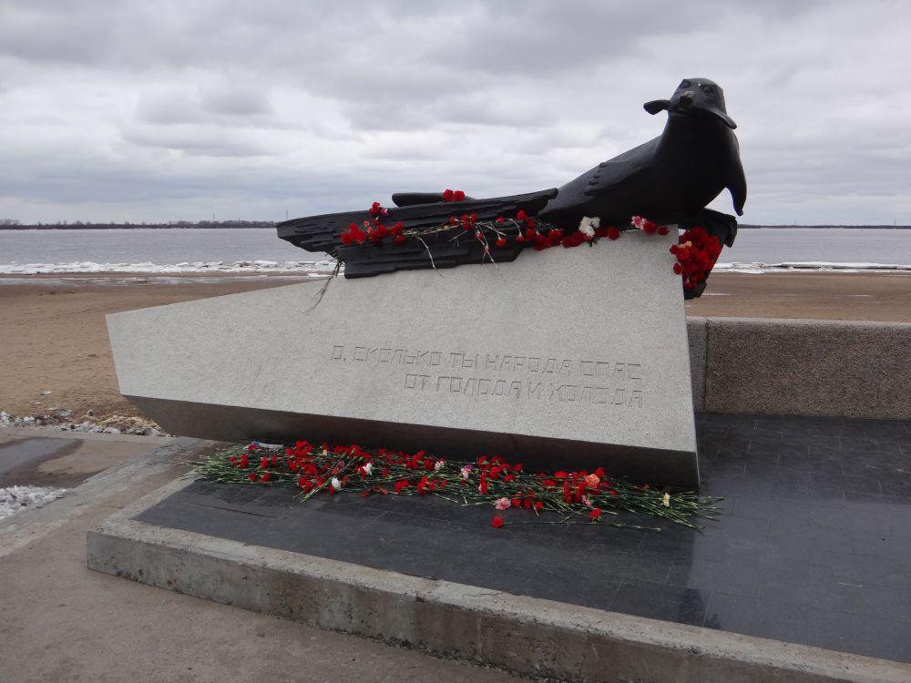 Тюлень спас от голода тысячи жителей Архангельска в годы войны