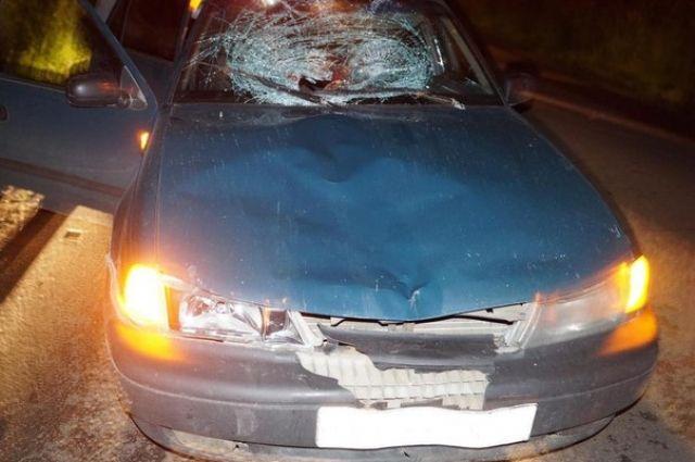 Тюменец получил перелом позвоночника из-за того, что превысил скорость