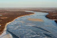 Ученые связывают возвращение белого лебедя с приходом весны.