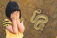Степная гадюка - одна из опасных змей.