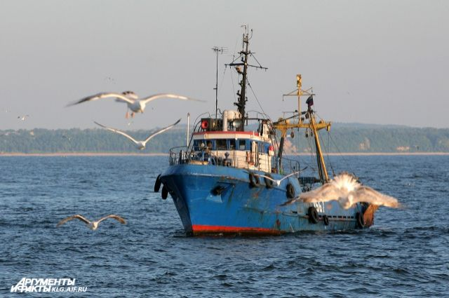 Укрымских берегов арестовано судно, подозреваемое внезаконной ловле рыбы