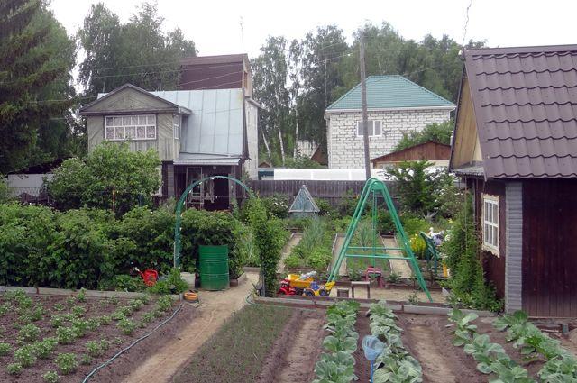 Дачные проблемы. Председатели СНТ будут решать все без садоводов?
