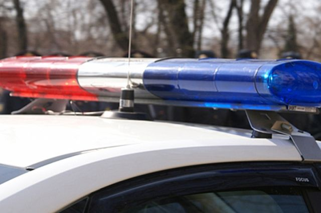 ВПетербурге двое мужчин угнали такси ипротаранили столб
