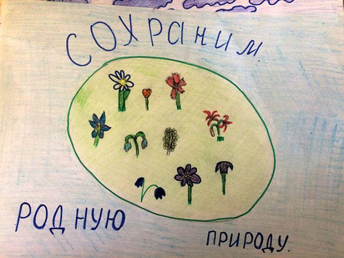 Участник №230 Корнакова Алена