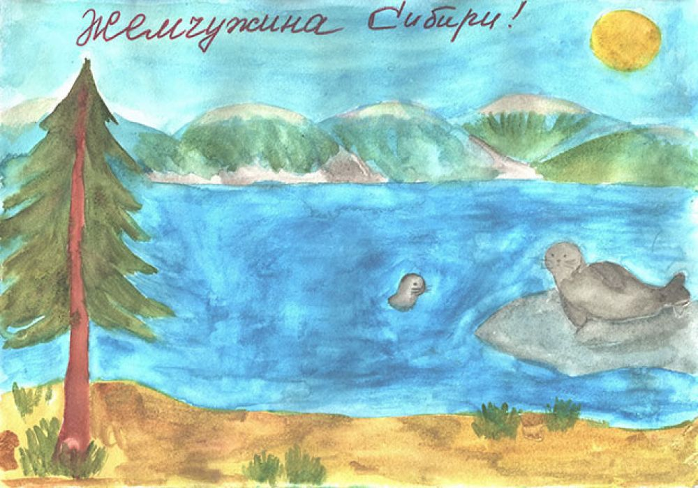 Участник №243 Еременко Кирилл