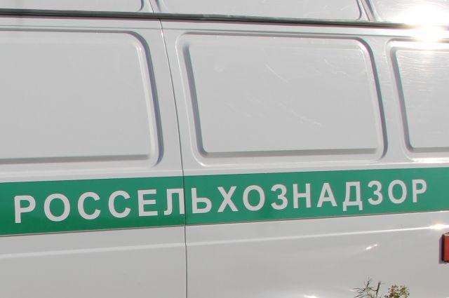 ВОрловской области землевладельца оштрафовали засорняки научастке