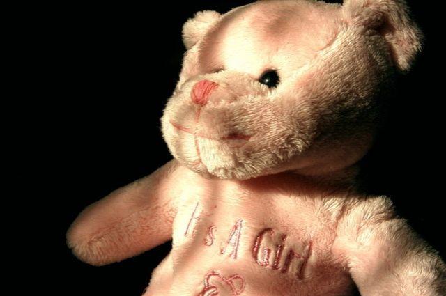 На 4 года может сесть в тюрьму калининградец за кражу плюшевого медведя.
