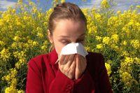 Если у вас есть симптомы аллергии, обратитесь к врачу.