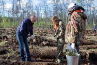 К саммитам стран ШОС и БРИКС в Челябинске должны существенно улучшить экологию. Один из путей - увеличение площади зелёных насаждений. На днях Борис Дубровский принял участие в посадке деревьев в городском бору.