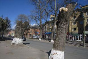 Обрезка деревьев по-псковски