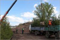 На участке в 1,5 гектара деревья и кустарники будут проходить адаптацию перед высадкой в городе.