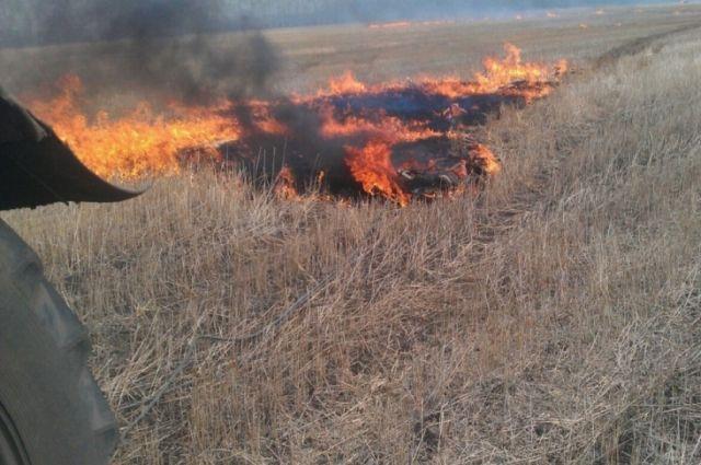 К пожару могут привести непотушенные угли мангала