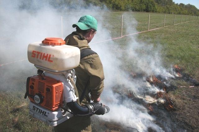 Велик риск возникновения ландшафтных пожаров.