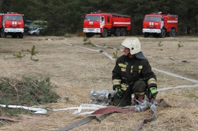 ВНелидовском районе сгорел дом - есть погибший