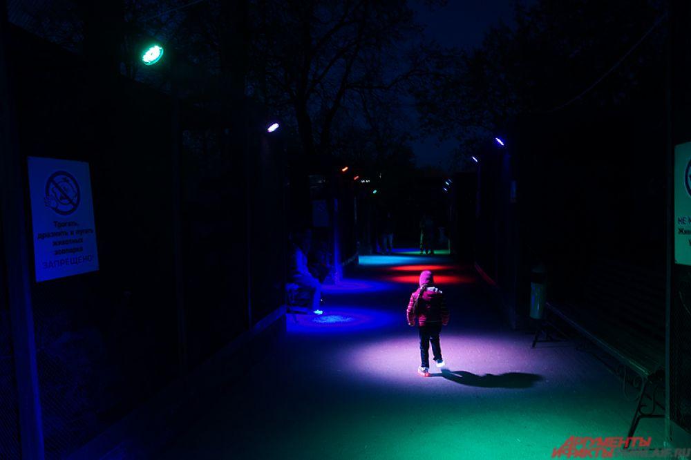 Пермский зоопарк в рамках акции «Ночь музеев» представил для зрителей насыщенную программу.