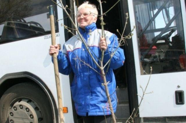 Садоводы жалуются, что вместительные автобусы заменили на ПАЗы.