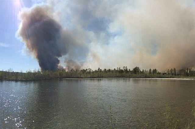 Более 20 лесных пожаров ликвидировали специалисты в Приангарье.