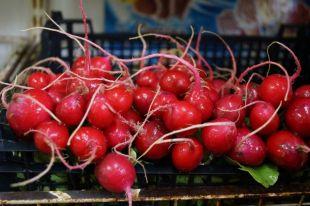 Свежий редис может стать основой сладкого блюда.