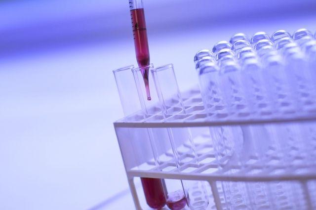 Итальянцы хотят открыть вБрянске нынешние медицинские лаборатории