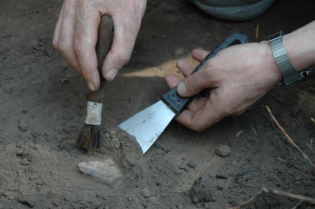 В Приморье археологи нашли железные инструменты 1-го тысячелетия до н. э.