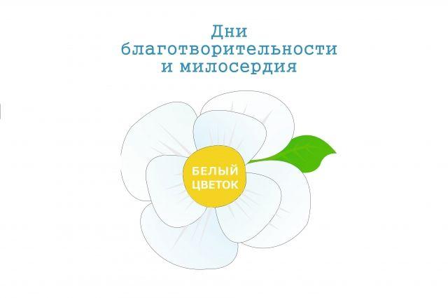 Картинки акции белый цветок, надписью