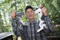 В мире существует более 200 пород кроликов, а в России всего 20.