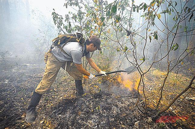 Жители Чайковского района в выходные спасали свои дома от лесного пожара.