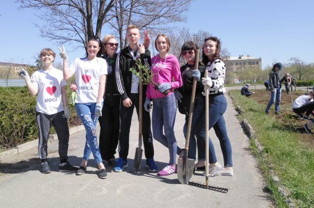 На субботнике студенты филиала высадили аллею роз.