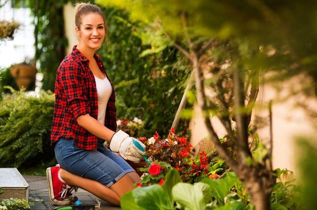 Секрет успешного садовода. Можно ли сделать руку «лёгкой»?