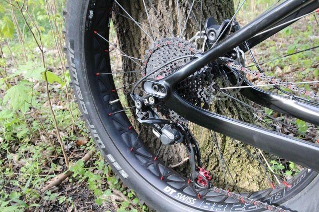 Ребенок свернул в лесополосу во время прогулки на велосипеде и пропал