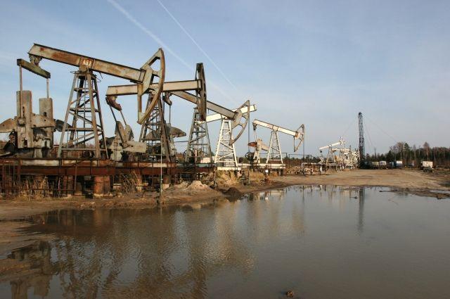 Новак сообщил о возможном сокращении экспорта нефти из РФ на 4 млн тонн