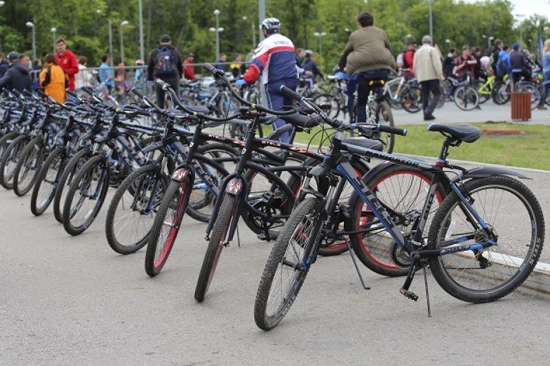 Двухколесные машины для тех, у кого нет своих велосипедов.