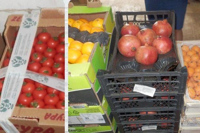 Под Воронежем уничтожили 8 тонн свежих яблок изПольши