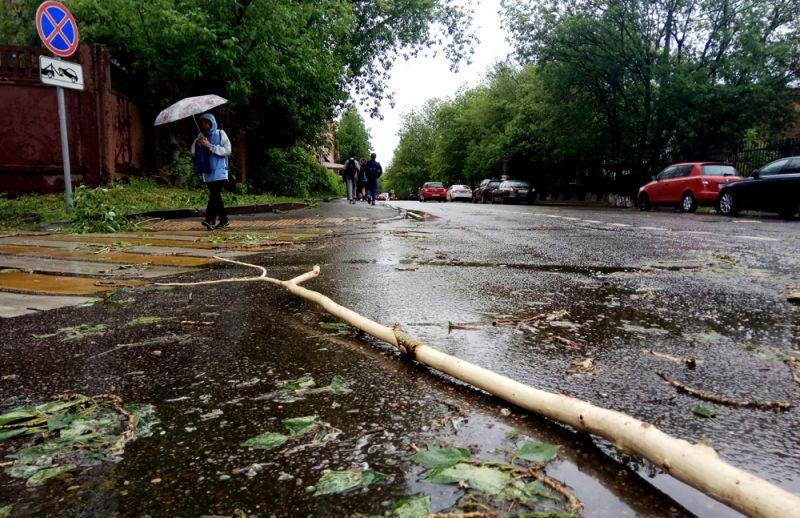 Сломанное ураганом дерево на улице города Москвы.