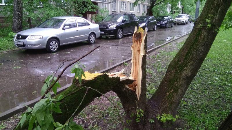 Последствия урагана в Москве.
