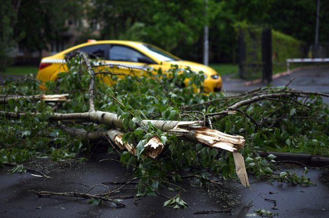 Число жертв урагана в столичном регионе выросло до 16 человек