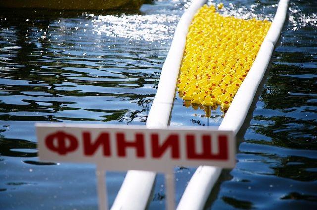 Утиный заплыв – распространенное благотворительное мероприятие, которое проходит во многих странах мира.