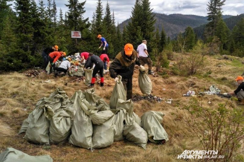 Всего было собрано 160 мешков.